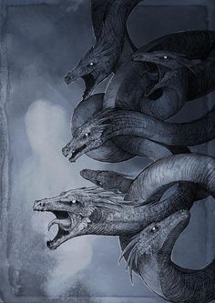 Hydra by Woari on DeviantArt Greek Creatures, Fantasy Creatures, Mythical Creatures, Dark Creatures, Chimera Mythology, Hydra Mythology, Hydra Monster, Dragon Ball, Dnd Monsters