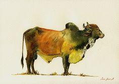 "ORIGINAL-Zebu Boran cattle cow watercolor African cow cattle painting farm animal cow 11x8"" -art original Watercolor painting by Juan bosco"