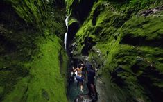 The Gorges de la falaise are a walk along a river built between two huge cliffs. Windward Islands, Next Holiday, Crystal Clear Water, Caribbean Sea, Travel Couple, Where To Go, Places To See, Tourism, Nature