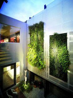 green vertical garden walls