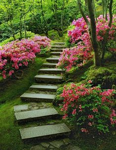 Portland Japanese Garden with stunning steps! via Carolyn Chase Peace and harmony are at one in the Portland Japanese Garden. Water, bridges, stone, lanterns and more abound in a Zen design. Garden Steps, Garden Paths, Garden Landscaping, Love Garden, Dream Garden, Landscape Design, Garden Design, Zen Design, Portland Japanese Garden