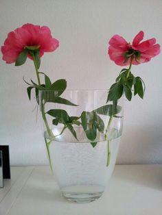 Pioenrozen: secret Flower arrangement