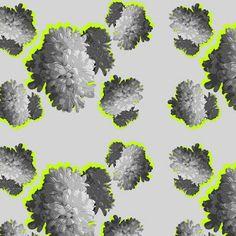 print & pattern: DESIGNER - kate lynch