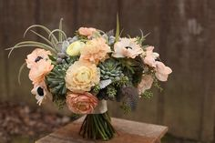 Bridal bouquet by Cincinnati florist Floral Verde, including tillandsias, succulents, peach and ivory ranunculus, peach anemones, brunia, dusty miller, seeded eucalyptus and guinea fowl feathers.