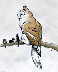 Owl griffin with more cats by RobtheDoodler on DeviantArt<<<ITS A COWL (sorry not sorry) Mythical Creatures Art, Mythological Creatures, Magical Creatures, Walpapers Cute, Cute Art, Animal Drawings, Cool Drawings, Owl Cat, Creature Concept
