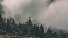 Twenty20 ~ Rising fog in the Alps.