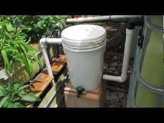 Aquaponic radial flow filter for solids removal