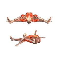 Tortoise pose - Kurmasana - Yoga Poses | YOGA.com