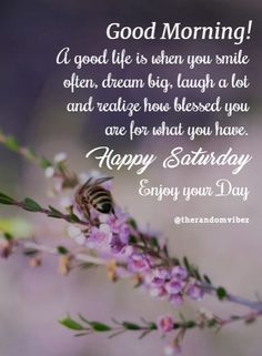 Happy Saturday Images, Happy Saturday Quotes, Happy Saturday Morning, Saturday Greetings, Morning Love Quotes, Morning Inspirational Quotes, Good Morning Gif, Good Morning Picture, Good Morning Messages