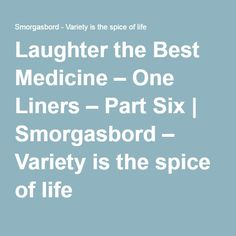 Laughter the Best Medicine – One Liners – Part Six   Smorgasbord – Variety is the spice of life