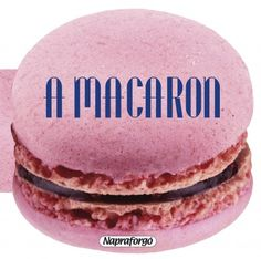 See related links to what you are looking for. Macarons, Weird Food, Fake Food, Tapas, Cake Recipes, Dessert Recipes, Pastas Recipes, Food Cost, Food Photography Tips