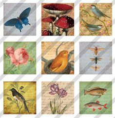 Digital Collage Sheet  1X1 Charms Inchies by lisasalteredart