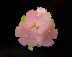 河原撫子 Kawara nadeshiko - Fringed pink