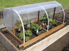 Build a portable garden cloche Protect newly planted beds and seedlings - extend the growing season! A garden cloche is open on the bott… Permaculture, Organic Gardening, Gardening Tips, Vegetable Garden, Garden Plants, Garden Cloche, Winter Vegetables, Greenhouse Gardening, Small Greenhouse