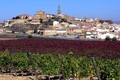 BRIONES (La Rioja). Spain. Viñedos.