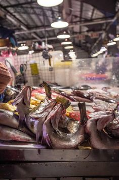 """Campaigners in Taiwan are calling for an end to the centuries-old practice of fish tethering – which sees live fish tied into a crescent shape to entice buyers – claiming the custom """"is a form of torture"""" and contravenes animal welfare standards. New Taipei City, Animal Society, Crescent Shape, Fish Farming, Bowfishing, Live Fish, Animal Protection, Animal Welfare, Taiwan"""