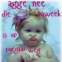 Funny Blogs, Afrikaanse Quotes, Goeie More, Monday Quotes, Good Night Quotes, Fairies, Sunday, Van, Rose