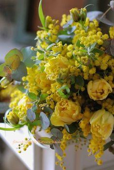 ミモザとチューリップのブーケと花好きなみんなの画像:花のun deux trois Amazing Flowers, My Flower, Yellow Flowers, Beautiful Flowers, Yellow Flower Arrangements, Wedding Bouquets, Wedding Flowers, Flora Design, Tulips