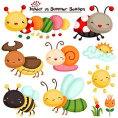 Insect in Summer Season