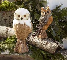 Owl Woodland Creature