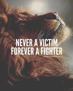 30 Of The Best Lion Quotes In Pictures - Motivational Quotes Of