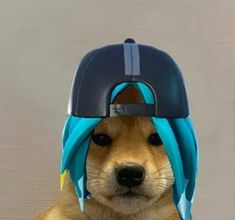 Dog Icon, Gaming Wallpapers, Chibi, Cute Animals, Anime, Style, Funny Animal Pictures, Diy Dog, Dibujo