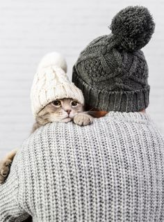 Hombre con espalda sosteniendo gatito pe... | Free Photo #Freepik #freephoto #invierno Scottish Fold, Mundo Marketing, Gato Maine, Coffee Shop, Knitted Hats, Winter Hats, Knitting, Shopping, Free