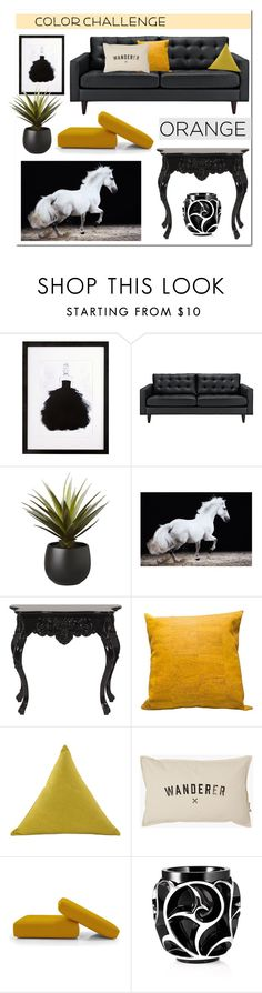 """""""Orange and Black"""" by hellodollface ❤ liked on Polyvore featuring interior, interiors, interior design, home, home decor, interior decorating, Steel 