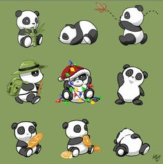 Cute pandas doing random activities