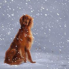 Irish Setter. First Snow.Laura Watkins Illustration