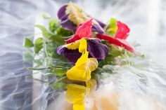 Vue De Monde, Melbourne  Liquid nitrogen subsides leaving frozen flower petals that will form the bed of a cucumber sorbet palate cleanser.