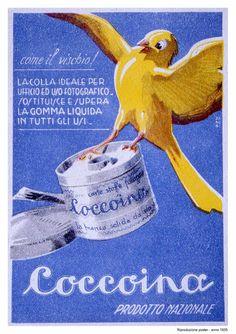 Vintage Italian Posters ~ #illustrator #Italian #posters ~ Old adv of Coccoina