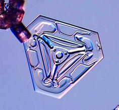 Triangular Crystal Snowflake by Kenneth Libbrecht via staplenews: Very rare. tinyurl.com/7j45  #Snowflake #Kenneth_Libbrecht