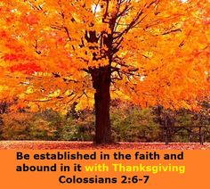 Good Morning from Trinity, TX Today is Friday November 7, 2014 Day 310 on the 2014 Journey Make It A Great Day, Everyday! Be established in the faith Today's Scripture:Colossians 2:6-7 https://www.biblegateway.com/passage/?search=Colossians+2%3A6-7&version=NKJV As you therefore have received Christ Jesus the Lord, so walk in Him, rooted and built up in Him and established in the faith, as you have been taught, abounding in it with thanksgiving. Inspirational Song http://youtu.be/ygyOECYwd-4