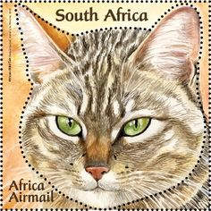 Postage Stamps - South Africa - Wild Cats by loraine Vintage Stamps, Vintage Cat, African Wild Cat, Art Postal, Postage Stamp Art, Fauna, Stamp Collecting, Cat Art, South Africa