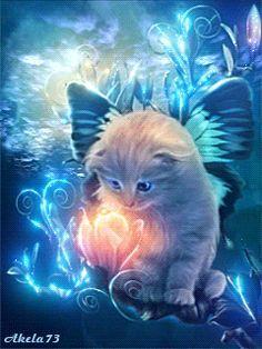 Le Chaton et le fleur magique