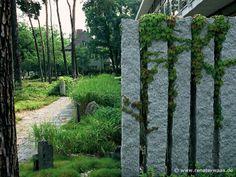 teich, grüne pflanzen und steine für eine schöne garten gestaltung ...