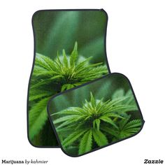 Marijuana Car Floor