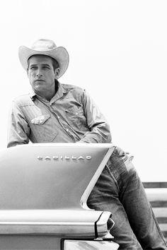 Paul Newman in Hud (Martin Ritt, 1963)