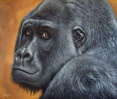 Gorilla | acrylic on canvas - cm. 60 x 50 | Wildlife Art by Roberto Rizzo | www.robertorizzo.com