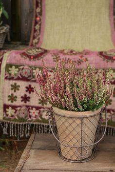 Bohemian-type tapestry or rug with a prominence of lilac yarns. Pretty In Pink, Beautiful Flowers, Heather Hills, Scottish Heather, Beautiful Home Gardens, Fall Containers, Gypsy Rose, Textiles, Miniature Plants