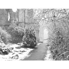 The Throat of Winter