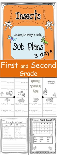 Up to 3 days of Substitute Plans for your First or Second grade classroom.  Your students can learn about insects while you are away.