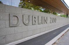 Four Fun Things to Do in Dublin | Ireland | Travel