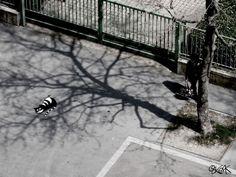 StreetArt in Frankreich   Oakoak