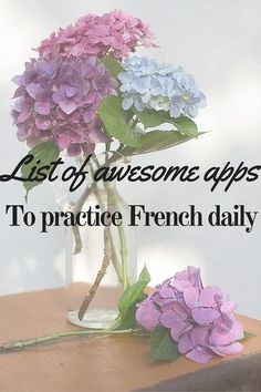 learn french app store / google play / selfrench