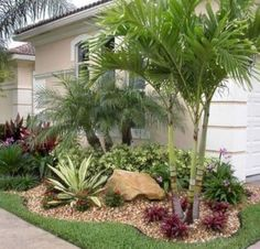Front Yard Garden Design 17 Small Front Yard Landscaping Ideas To Define Your Curb Appeal Palm Trees Garden, Palm Trees Landscaping, Small Front Yard Landscaping, Florida Landscaping, Florida Gardening, Front Yard Design, Tropical Landscaping, Landscaping Design, Outdoor Landscaping