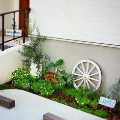 女性で、のハーブ/ユーカリ/オリーブ/ガーデン/花/植物…などについてのインテリア実例を紹介。「何か忘れた物も多いですが 今はグリーン&ホワイトで揃ってます。。他の色の物も植えた気もするんだけど、おかしいな。。(^_^;)」(この写真は 2014-08-17 09:59:32 に共有されました)