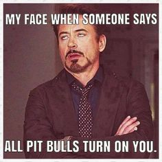 So true! All pit bulls turn on you. Ha!