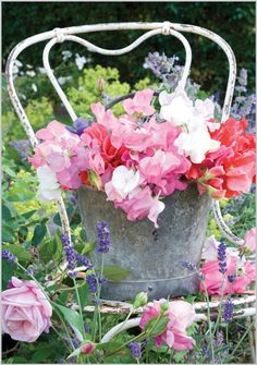Pink Flowers : Bucket of Sweet Peas - Flowers.tn - Leading Flowers Magazine, Daily Beautiful flowers for all occasions Amazing Gardens, Beautiful Gardens, Deco Floral, Dream Garden, Garden Inspiration, Floral Arrangements, Beautiful Flowers, Shabby Chic, Sweet Peas